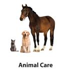 ASDAN Animal Care Logo