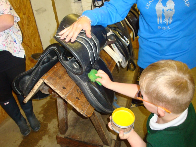 Cleaning under the saddle flap